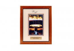 Framed-single-picture2