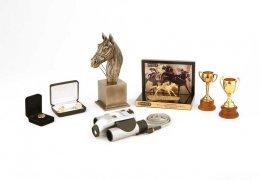 momentos-horse-racing